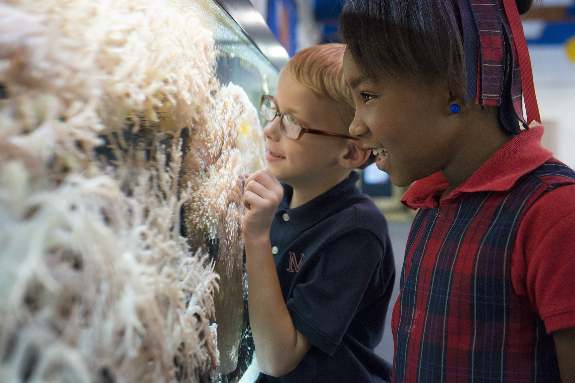 Lower School Students at Fishtank